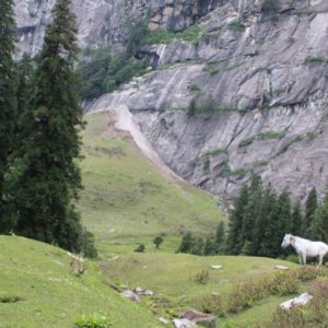 Read more about the article Why is it amazing to visit Himachal Pradesh